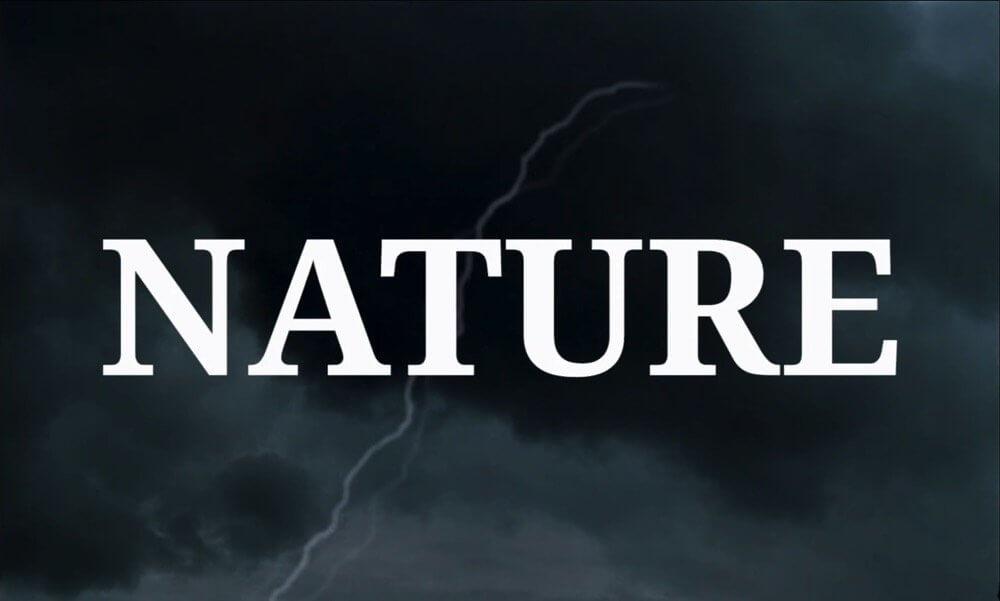 jan svankmajer struggles with nature