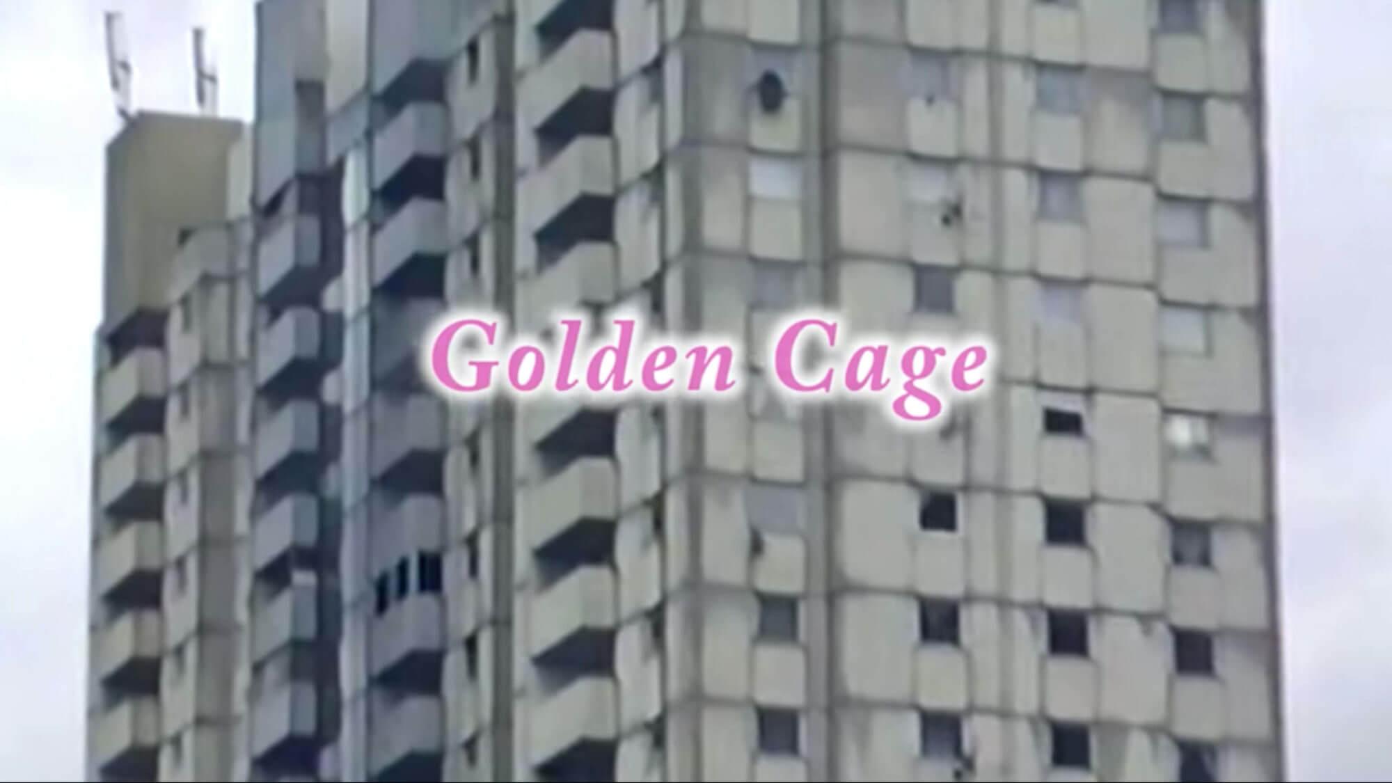 nilufer yanya golden cage01 1