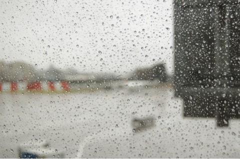 雨の季節ですね。