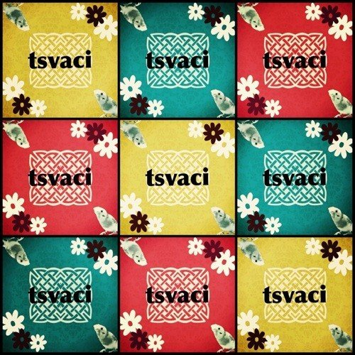 tsvaci1